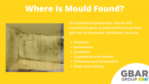locations that mould is found around the home