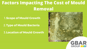 factors impacting the cost of mould removal in Sydney