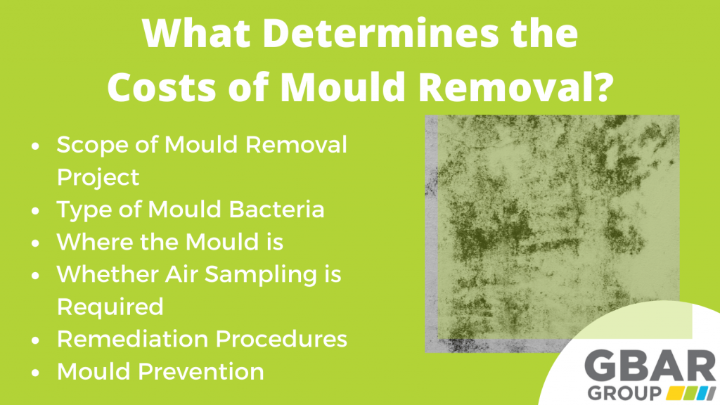 factors that impact the cost of mould removal