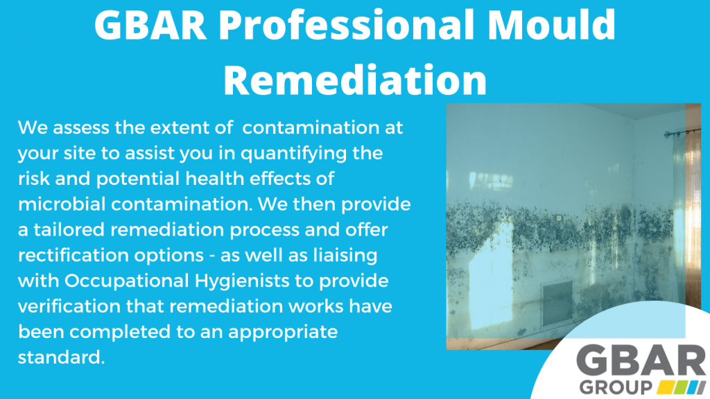 professional mould remediation - what's involved