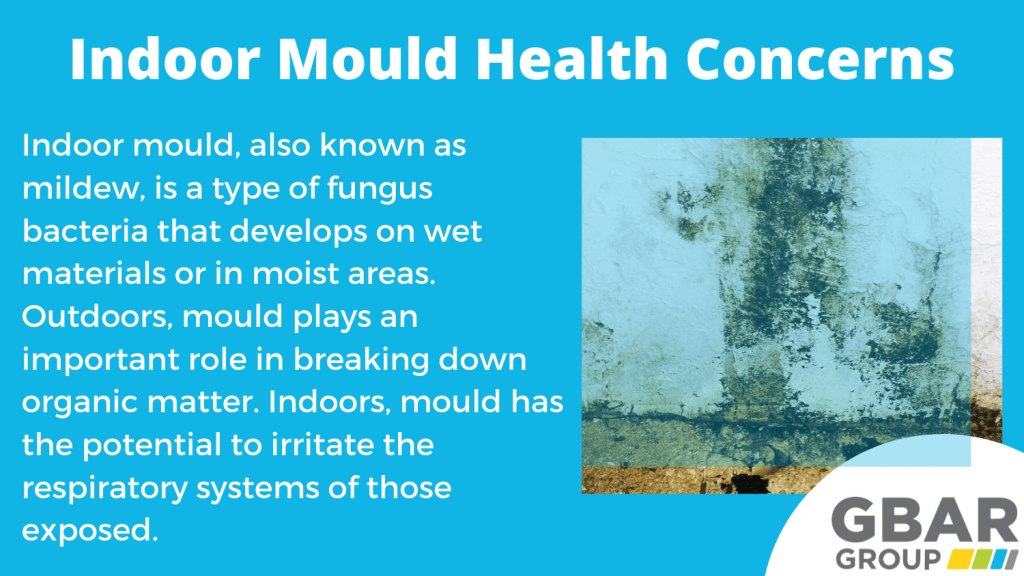 indoor mould health concerns