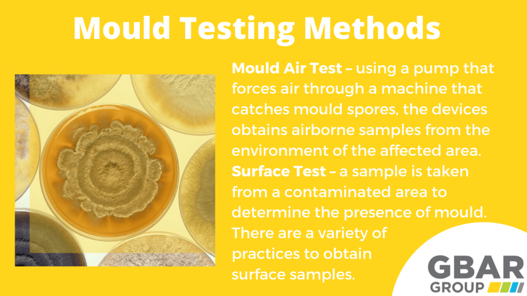 mould testing methods