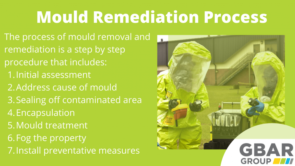 the mould remediation process