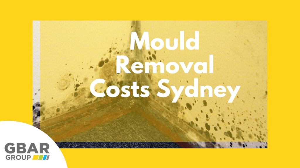 mould removal costs sydney - cover image
